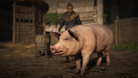 AC Valhalla's Pig of Prophecy