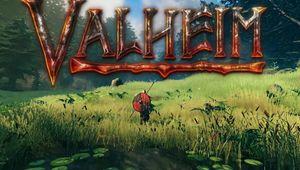 Valheim screenshot showing a logo and lush meadow