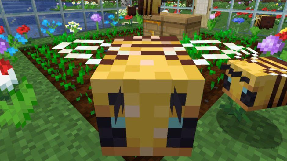 Minecraft - Buzzy Bees update