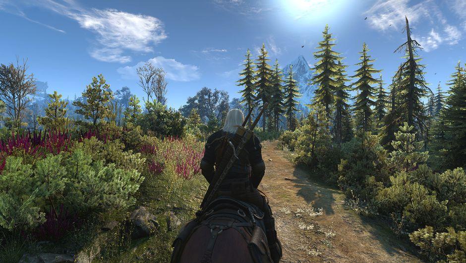 witcher 3 screenshot showing skellige panorama