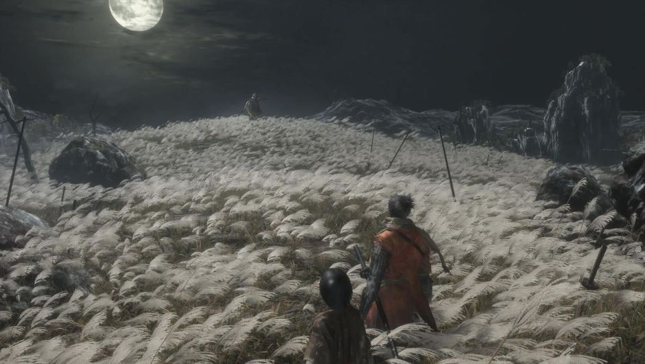 A wheat field at night from Sekiro: Shadows Die Twice
