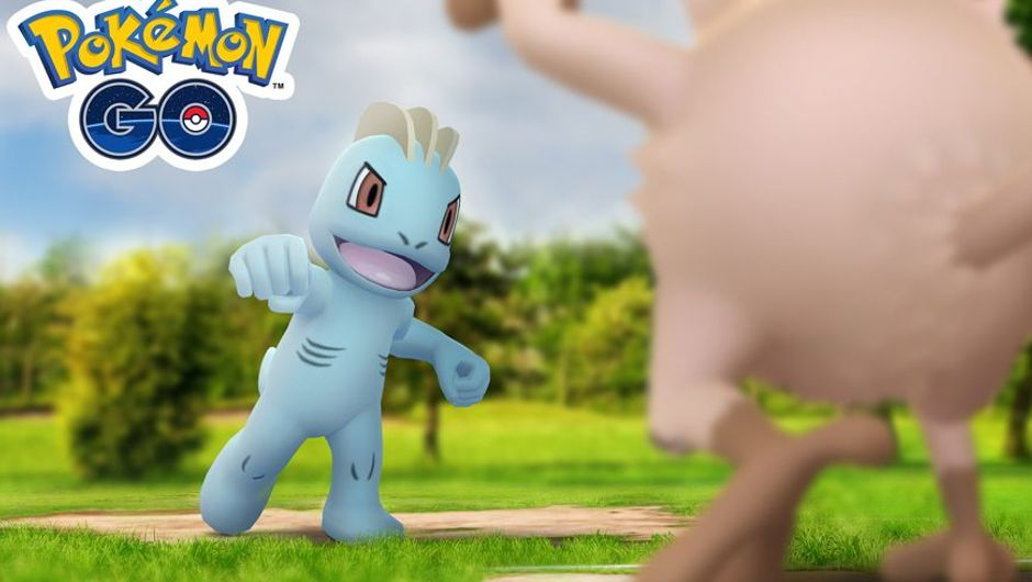 Picture of Machop and Mankey about to clash