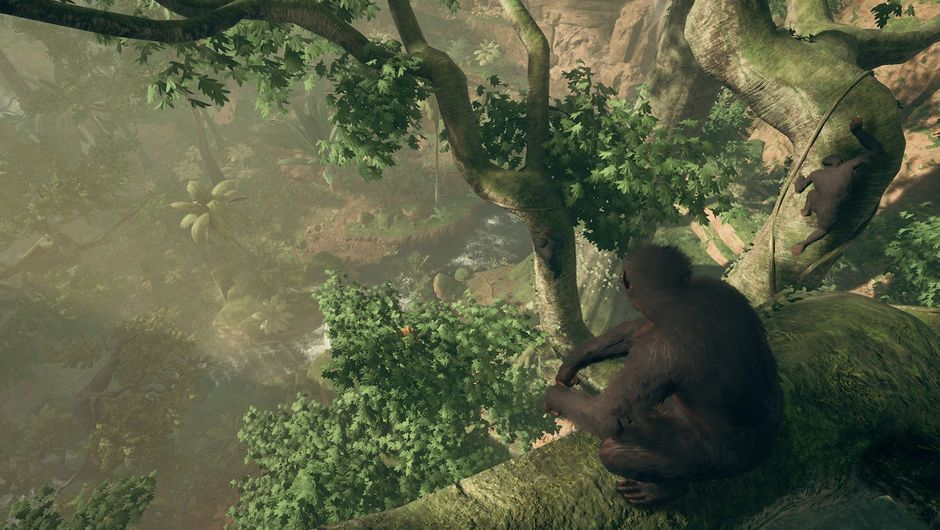 ancestors screenshot showing a monkey looking at jungle from a tree