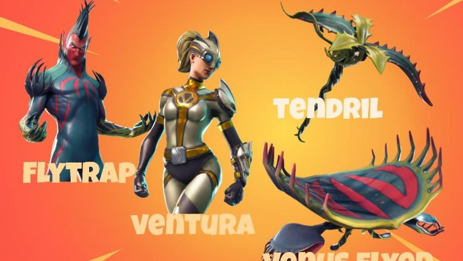 Two skins, one pickaxe and one glider from Fortnite