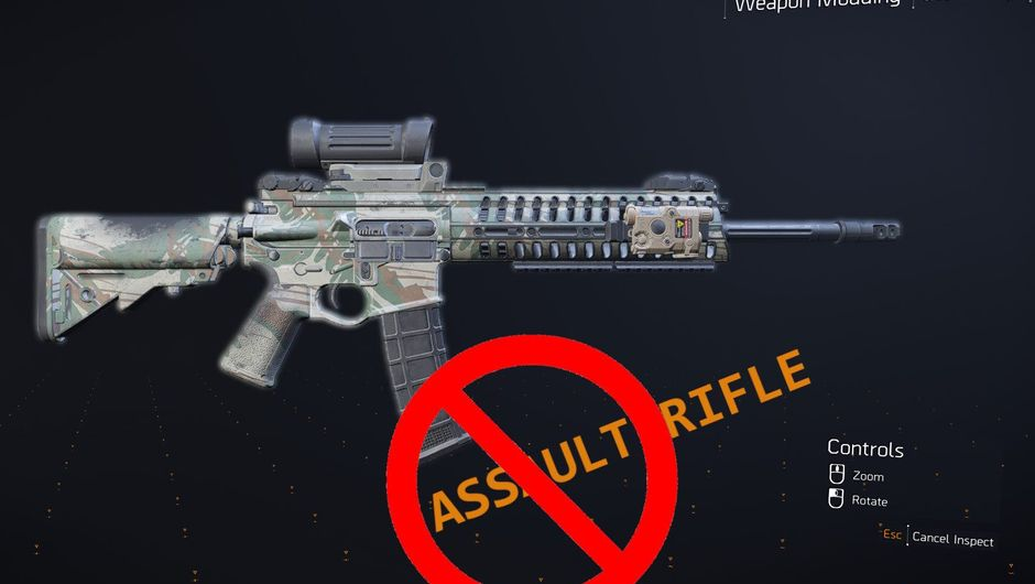 Picture of an assault rifle in The Division 2