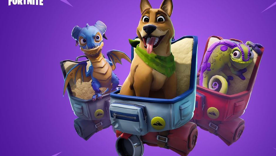 Fortnite's Season 6 addition - pets