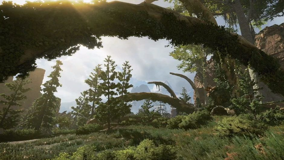 Picture of some nature in Apex Legends