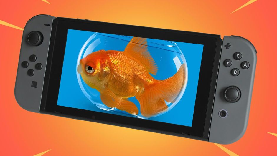 A picture of a goldfish photoshopped on Nintendo Switch